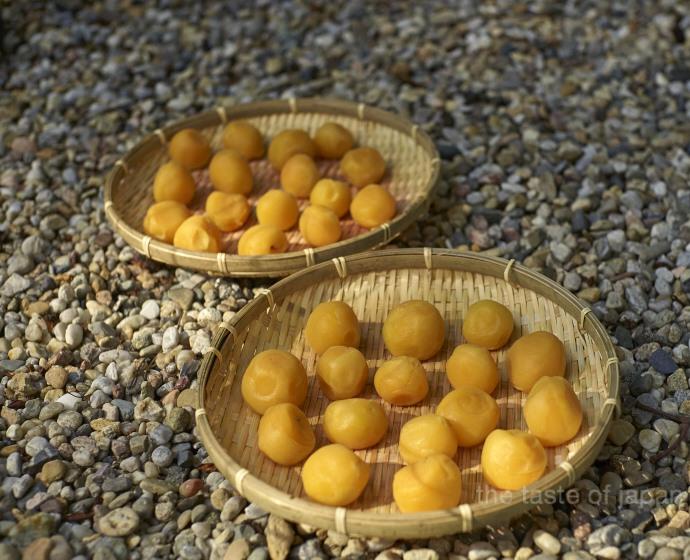 'Umé Boshi' trocknen in Weidenkörben in der Sonne