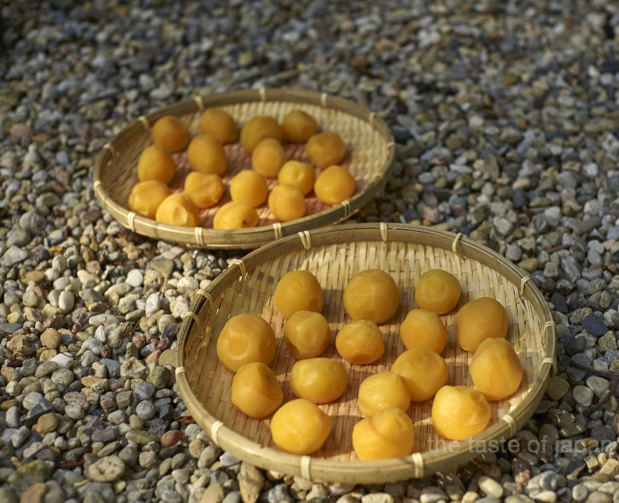 Local apricots fermented umeboshi style