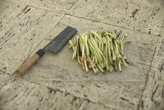 Frisch geschnittene Auberginen Julienne